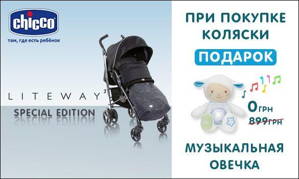 Подарок при покупке коляски Lite Way