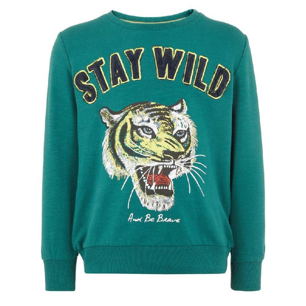 Джемпер Name it Stay wild, арт. 193.13167366.BAYB, цвет Зеленый