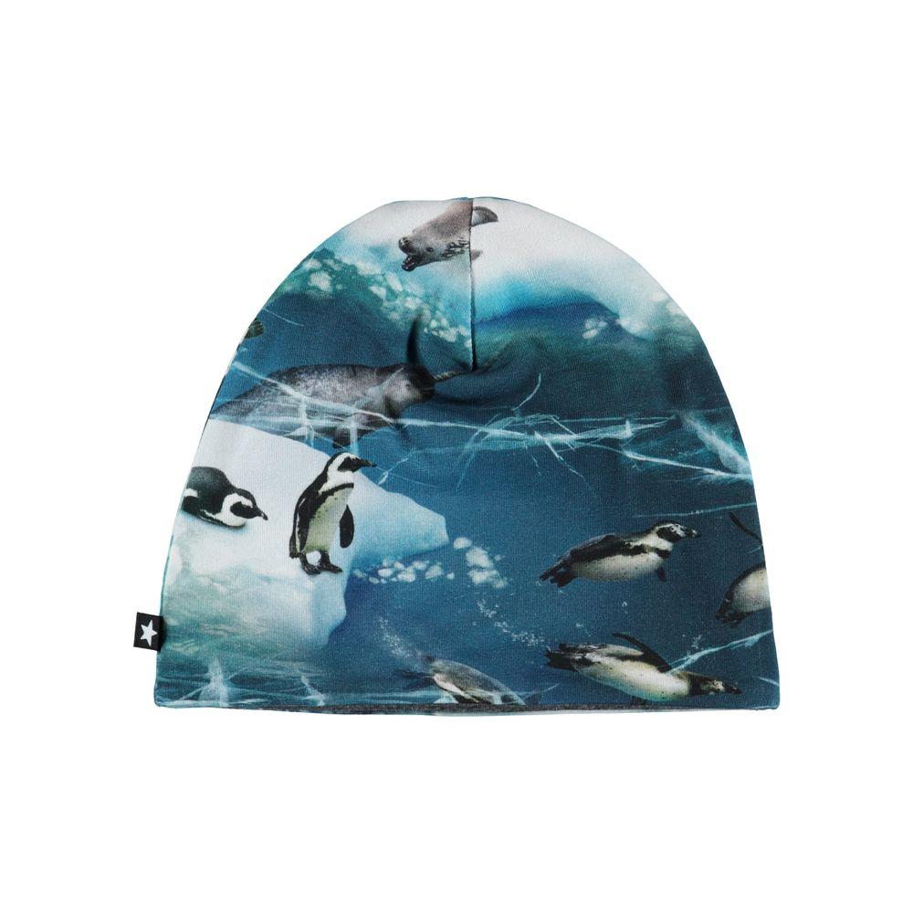 Шапка Molo Ned Antarctica, арт. 7W19T204.4885, цвет Синий
