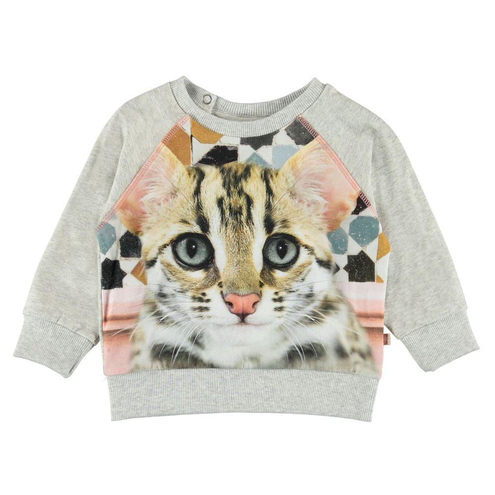 Джемпер Molo Elsa Kitty, арт. 4W19A401.7006, цвет Серый