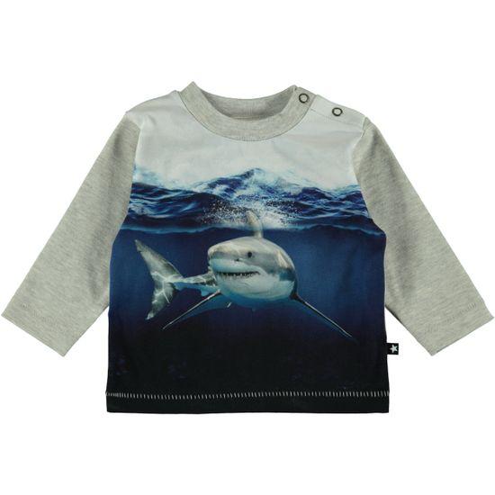 Реглан Molo Enovan Friendly Shark, арт. 3S19A408.3204, цвет Синий