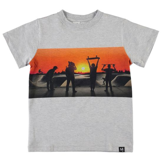 Футболка Molo Road Red Sky Skate, арт. 1S20A220.7158, цвет Серый