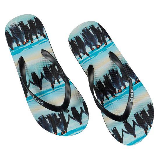 Сланцы Molo Penguin Stripe, арт. 7S20U201.6038, цвет Черный