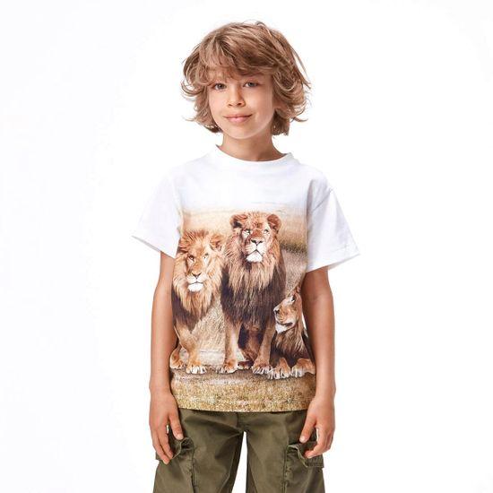 Футболка Molo Road 3 Lions, арт. 1S21A228.7428, цвет Бежевый