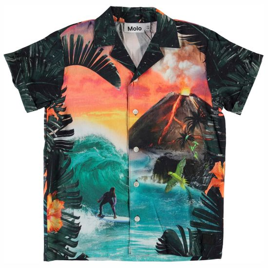 Рубашка Molo Rodi Wildest Island, арт. 1S20C201.7118, цвет Разноцветный