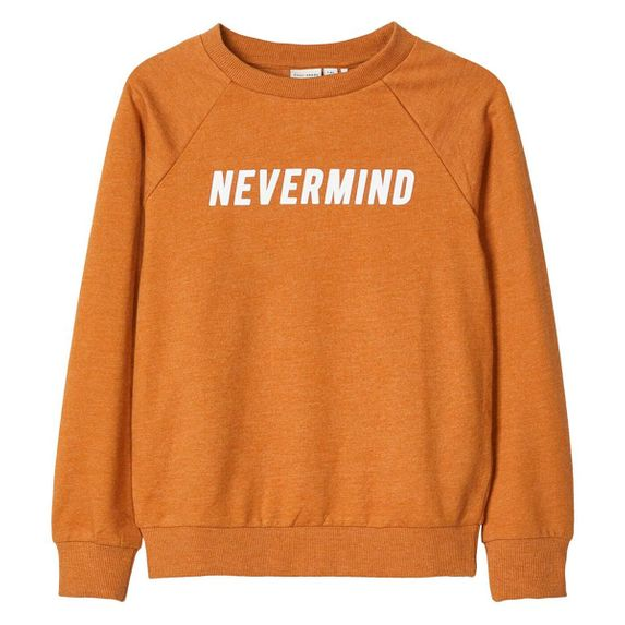Джемпер Name it Nevermind, арт. 201.13174763.BBRO, цвет Коричневый