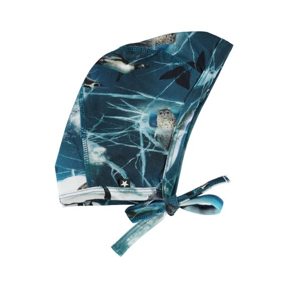 Шапка Molo Nis Antarctica, арт. 7W19T203.4885, цвет Синий