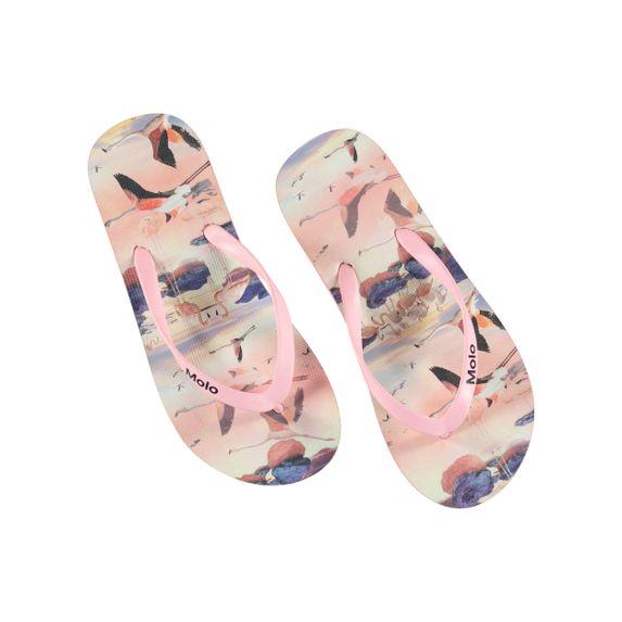 Сланцы Molo Zeppo Flamingo, арт. 7S19U202.4795, цвет Розовый